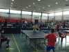 4° Torneo Regionale Noale - 15-03-2015