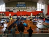 Torneo Regionale giovanile Mortise - 24-01-2016